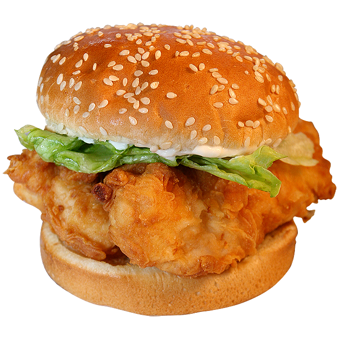 FROZIT chicken burger